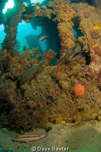 again the north mole wreck by Dave Baxter