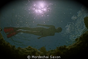 Snorkelers make great models. by Mordechai Saxon