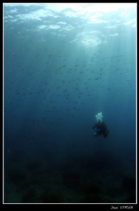 Our last dive at the Islas Medes ... great fun by Daniel Strub