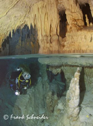 Diving a cenote in the south of the Dominican Republic no... by Frank Schneider