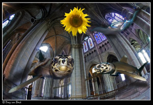 Holy turtle... by Dray Van Beeck