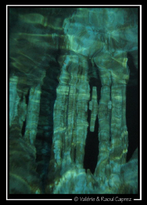 Stalactite reflect in a cenote. Canon G9 by Raoul Caprez