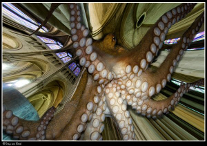 Giant octopus... by Dray Van Beeck