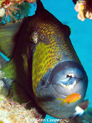 Cleaning time!