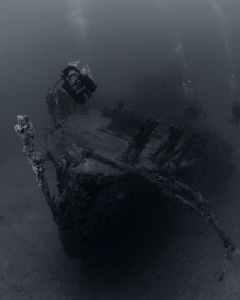 A diver being pretty brave at the wreck of the Fearless. by Juan Torres