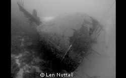 Hilma Hooker in Bonaire.  DX-G1 with natural light. by Len Nuttall
