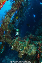 Inside the wreck of SS Carnatic. Canon XSi with Tokina 10... by Vladimir Levantovsky