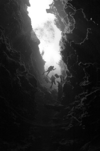 Divers enter Piccaninnie Ponds, Mount Gambier South Austr... by Mick Tait