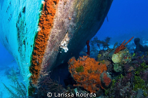 Parallel dimension.  Shot of the front of a wreck, with s... by Larissa Roorda