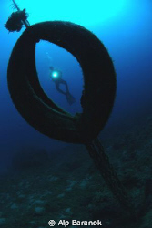While my buddy and I were diving, we saw this tire used a... by Alp Baranok