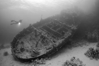 Abu Galawa, Red Sea. Photo taken with a Nikon F90X in an ... by Pablo Pianta