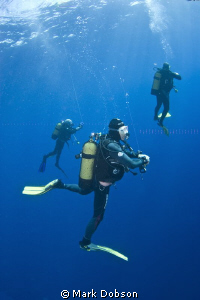 Divers doing a safety stop after dive. EOS 20d 1 DS125 st... by Mark Dobson