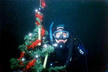 Joyeux Niël, Merry Chistmas, Feliz Navudad,..... by Philippe Brunner
