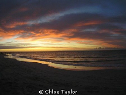 Before a Night Dive, Geraldton by Chloe Taylor