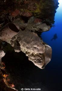 Bunaken diving by Girts Kravalis