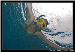 One of my Open Water students came to say hello while I w... by Yves Antoniazzo