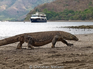 Surface interval :-)