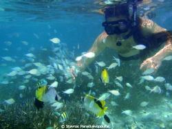 snorkeling by Stavros Paraskevopoulos