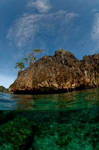 Under/over taken in Raja Ampat. by Charles Wright