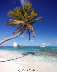The view from Jamesby in the Tobago Cays, St. Vincent and... by Kay Wilson