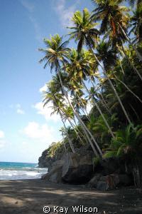 Black Point beach, windward coast, St. Vincent, St. Vince... by Kay Wilson