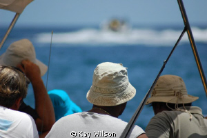 Watching a boat race. Mount Wynne Beach, St. Vincent, St.... by Kay Wilson