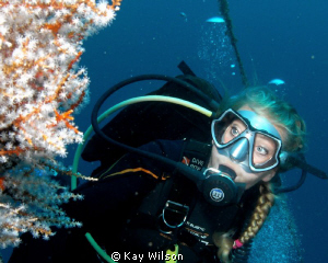 Lady diver with soft corals. Sea and  Sea DX1G / wide ang... by Kay Wilson