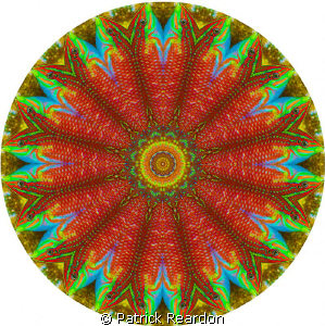 Psychadelic kaleidoscopic image.  We put the psychadelic ... by Patrick Reardon