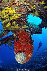 The propellar at the Hilma Hooker wreck. Nikon D300 in Ne... by Christian Skauge