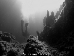 Slow dive....... by Ioannis Davios