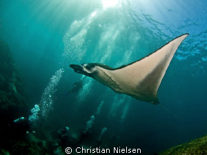 Happy divers and hopefully also the Manta Ray. Photo sho... by Christian Nielsen