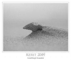 Imagine: Were did this Shell live, how long ago did it di... by John De Jong