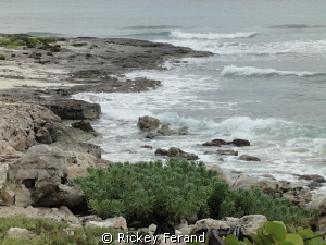 North side of the island - Cozumel, MX by Rickey Ferand