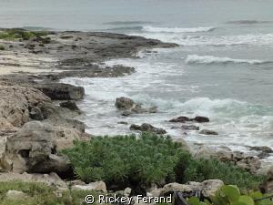 North side of the island - Cozumel, MX by Rickey Ferand