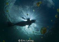 Mermaid by Eric Leong
