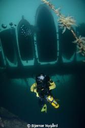 Re-breather diver hanging around under the pir. by Bjørnar Nygård