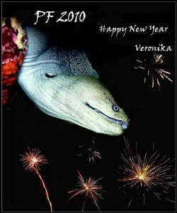 Happy New Year by Veronika Matějková