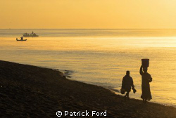 As the sunrises, life wakes up along the western shores o... by Patrick Ford