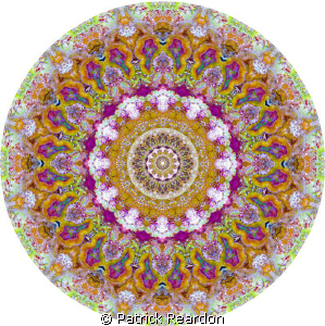 Kaleidoscopic image made from brightly colored coral.  Lo... by Patrick Reardon