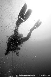 B&W Diver www.h2o.org.il by Skinonimus Uw