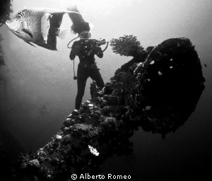 """On the wreck of italian ship """"Umbria""""  autosunked in Red ... by Alberto Romeo"""