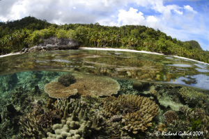 """Jungle & Reef""-Raja Ampat by Richard Goluch"