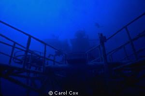 The Oriskany, an aircraft carrier sunk as an artificial r... by Carol Cox