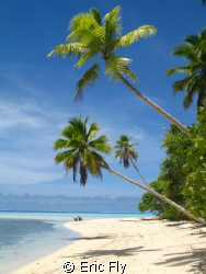 Tropical Paradise-  Ant Atoll, Pohnpei by Eric Fly