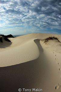 Dunes on Betties Bay beach by Tony Makin