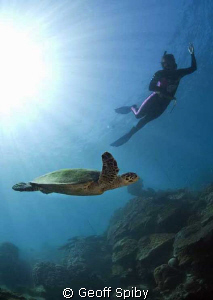 Lyn snorkelling with a turtle at Nosy Tanikely, Madagascar by Geoff Spiby