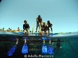 Ready to Splash in.