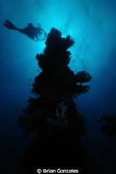 Truk Lagoon, Mast Post by Brian Gonzales