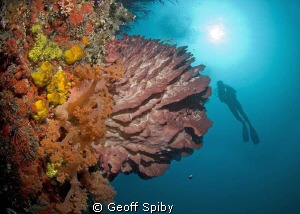 the wall at Pescador island by Geoff Spiby