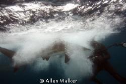 Ooops........ by Allen Walker